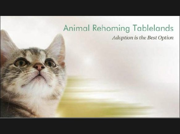 Animal Rehoming Tablelands