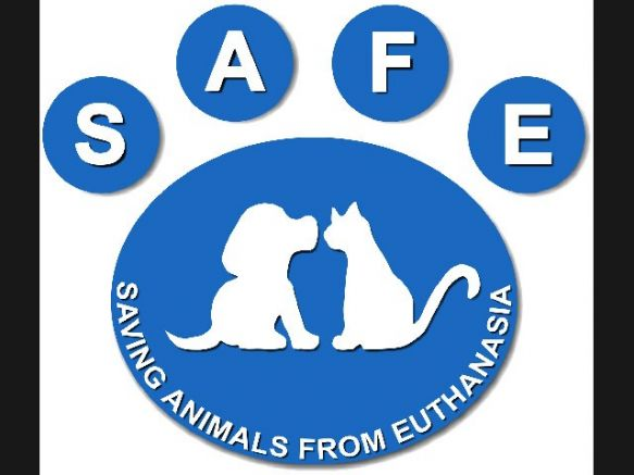 Saving Animals From Euthanasia Inc. (S.A.F.E)
